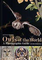 No birder's bookshelf should be without this definitive work on owl identification! Win this fine piece of work by Heimo Mikkola, as well as a whole hamper of other Helm Identification Guides, by entering this competition: http://www.rockjumperbirding.com/competitions/bloomsbury-book-hamper-competition-2016/ #birds #birding #birdwatching #nature #wildlife