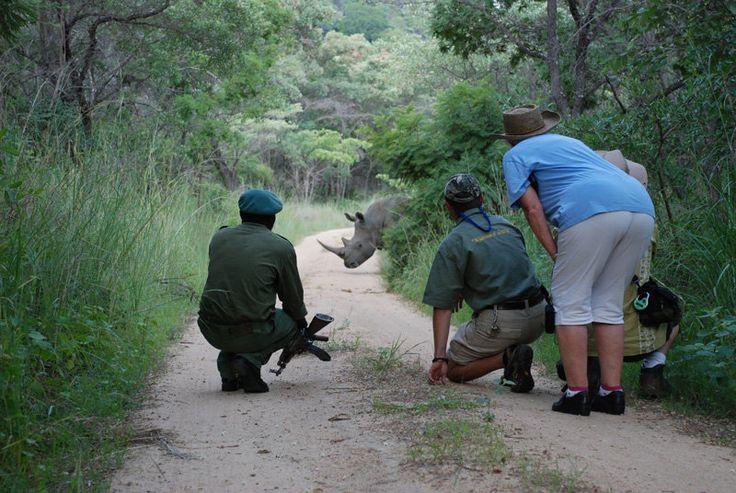 The Matobo Rhino Protection Initiative