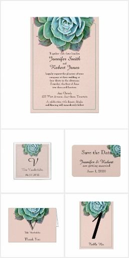 Blush Succulent Wedding