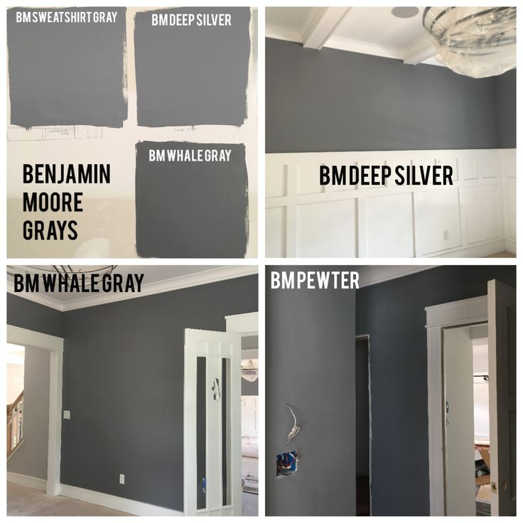 Benjamin Moore Deep Grays.     Sweatshirt Gray (2126-40), has a blueish tinge.      Deep Silver (2124-30), a deep, neutral gray.   Whale Gray (2134-40), a very deep gray, a nice alternative to Amherst Gray, which has a lot more brown.    Pewter (2121-30), another deep gray with the slightest tinge of blue.