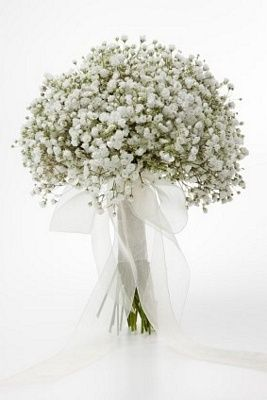 Gypsophila is on trend right now - simple yet stunning single bloom bridal bouquet teamed with an organza bow