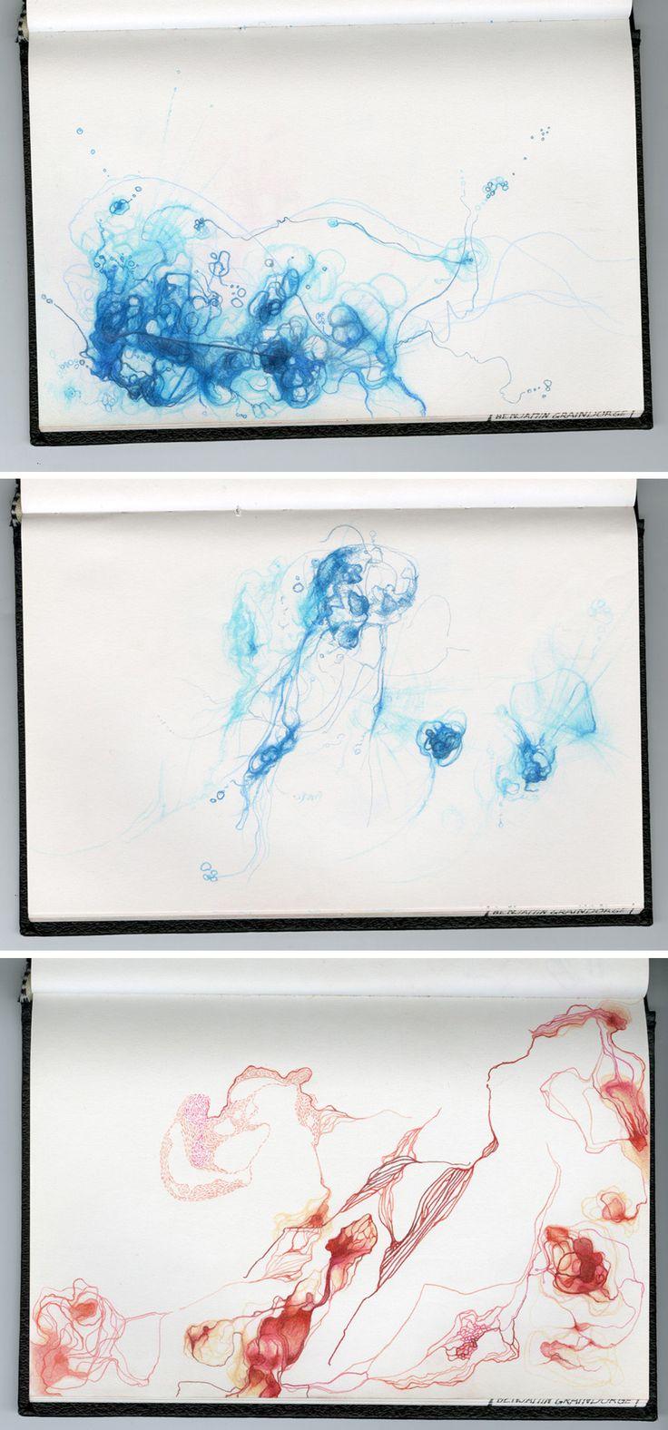 Benjamin Graindorge - Paysages Domestiques