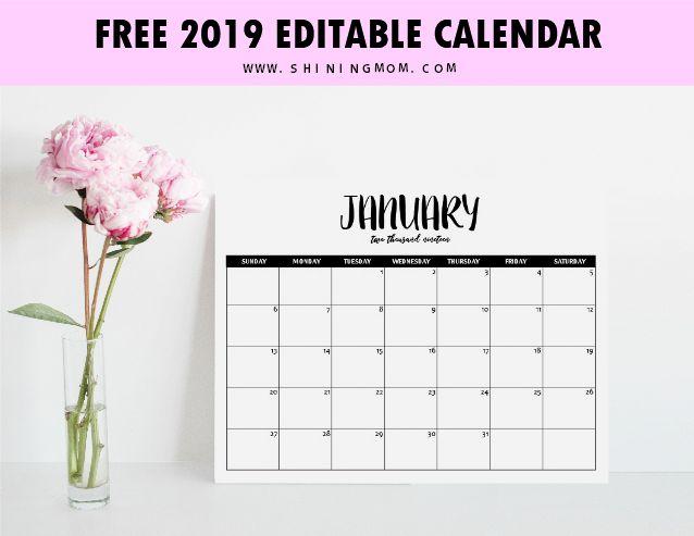 free fully editable 2019 calendar template in word