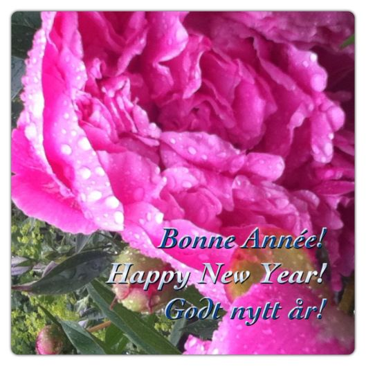 IMG_3500 Happy new year!