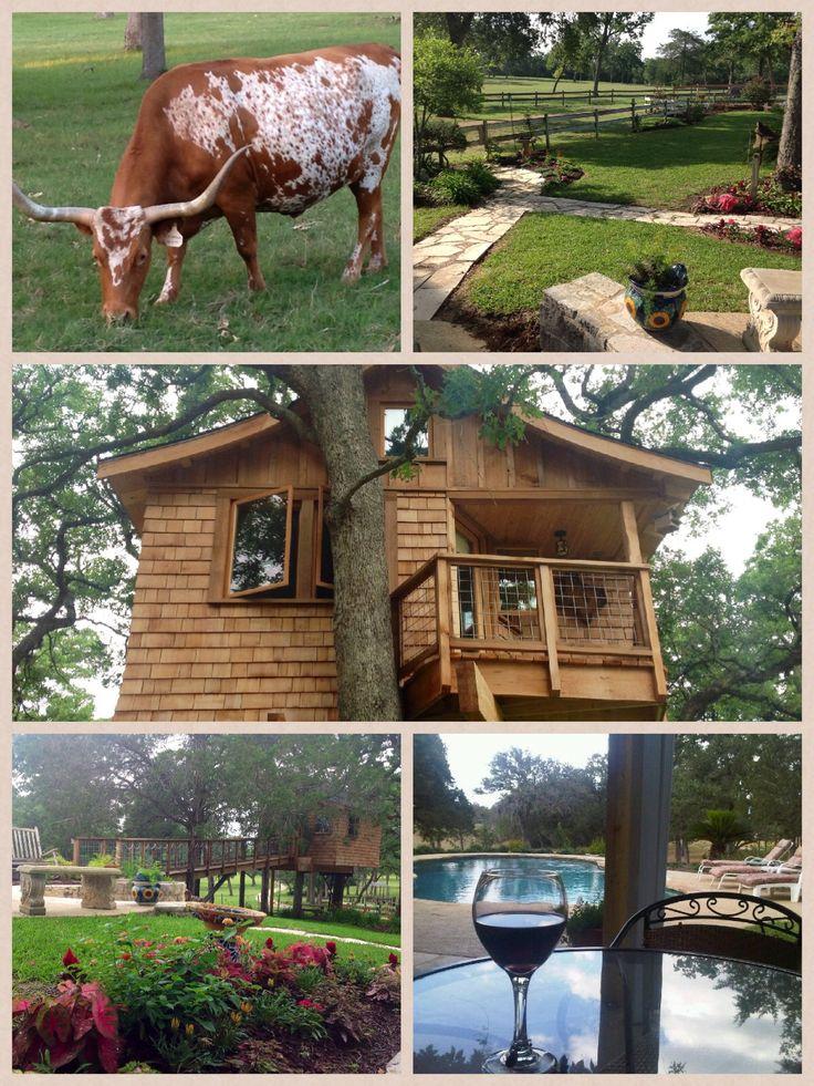 Davis Ranch Retreat.