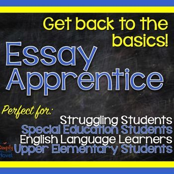 essay summer program