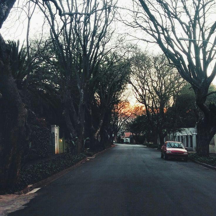 Parkview,  Johannesburg,  September2014