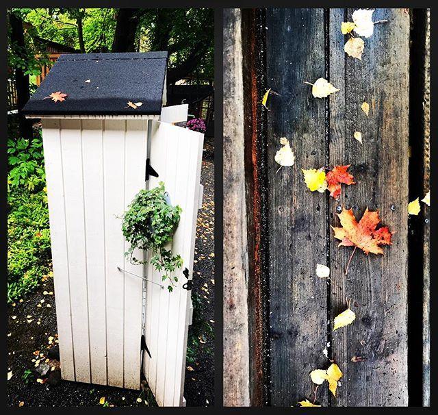 Pikkurontit lähdössä Kissakahvila Helsinkiin ensi viikolla #lasikorut #kissakahvilahelsinki #tuulapaju #glassjewerly #kaulakorut #necklaces #Finnishhandicrafts #suomestakäsin #handmade #tampere