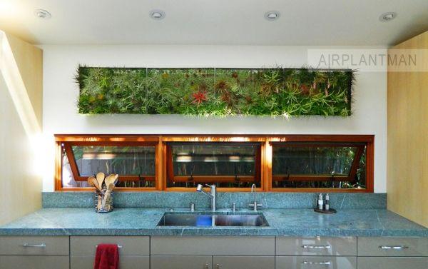 Ber ideen zu indoor vertikale g rten auf pinterest for Pflanzen innenbereich