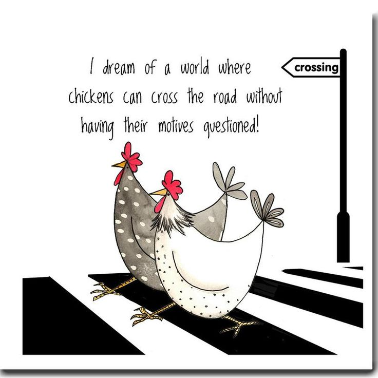 Chicken card dream of a world funny chicken greeting