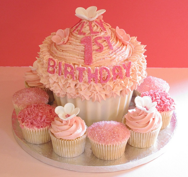 51 best Babygirl cake smash images on Pinterest Anniversary ideas