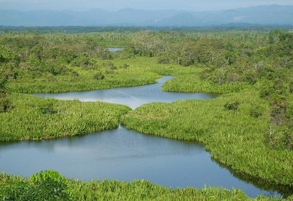 water paradise at north Bengkulu - Dendam Tak Sudah Lake
