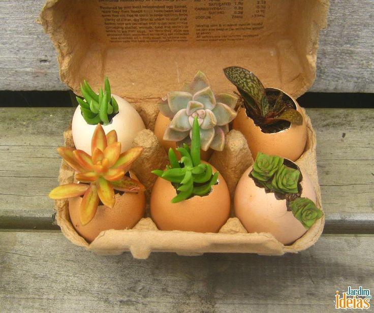 Muitas pessoas tem o costume de usar cascas de ovo para adubo orgânico, mas elas também podem ser reaproveitadas para fazer um mini jardim!