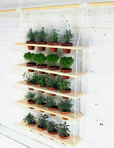 Полка для растений