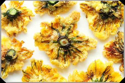 fried dandelion flowers. tried today for the first time, tastier than I expected. fortunately they're easy to grow