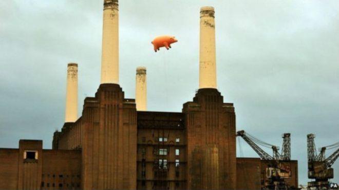 ThinkFloyd61: Porco da capa do álbum do Pink Floyd vai a leilão