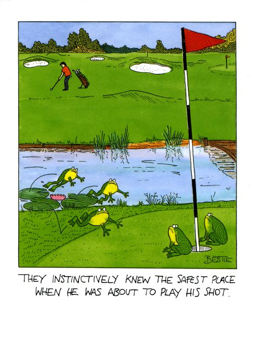 They instinctively knew the safest place to be when he was about to play his shot. #golf #humour