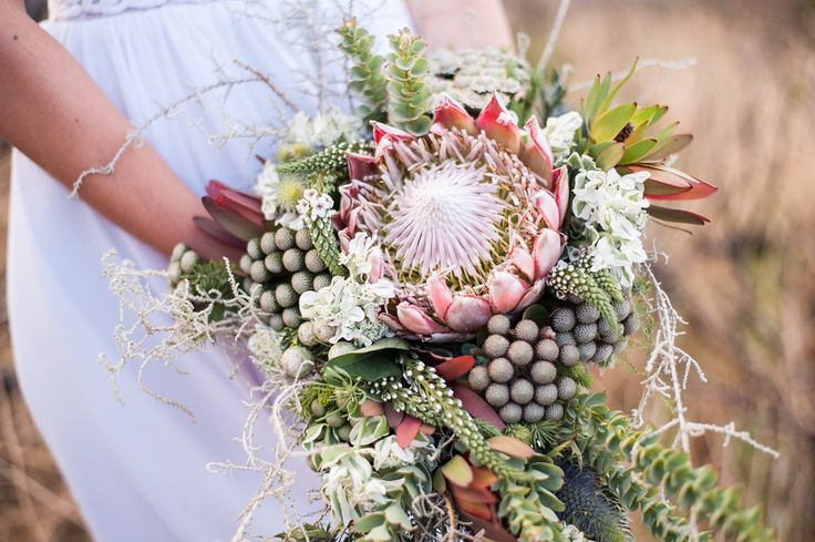 Hand tied cascade bouquet of King protea, brunia, slangbos and natural fynbos mixes. Thanks to Lauren Pretorius Photography