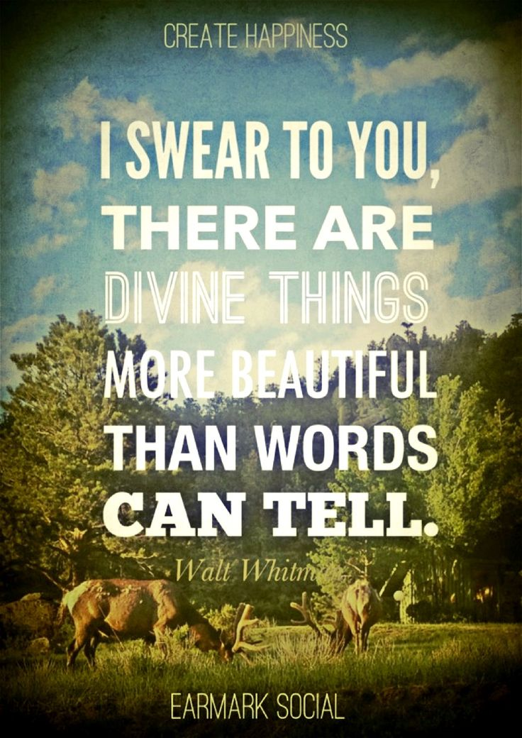 I swear to you, there are divine things more beautiful than words can tell. - Walt Whitman