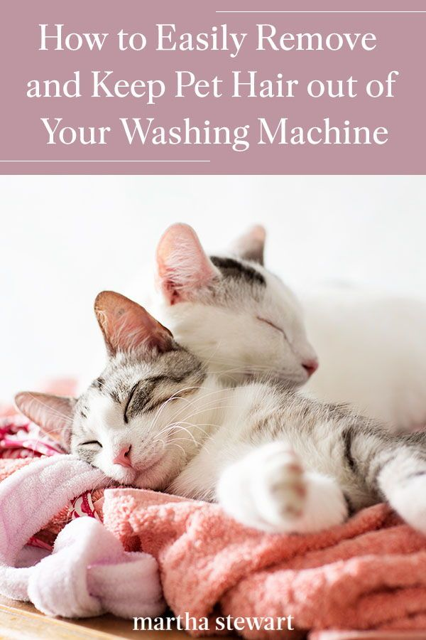 How To Keep Pet Hair Out Of Your Laundry And Remove It From Your Washing Machine In 2020 Cleaning Pet Hair Pet Hair Washing Machine