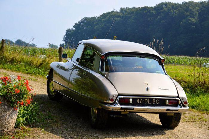 Citroën DS 20 Pallas - 1974