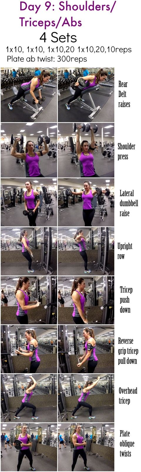 Day_9_shoulders_triceps_abs_BLOG