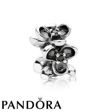 Pandora Black Friday 2015 Black Zirconia Flower Spacer Clearance Deals PDR780506CZ [PDR780506CZ] - $11.00 : 2015 Authentic Pandora Charms Black Friday Clearance Sale USA - Pandora Jewelry Cheap Online, Pandora Charms Deals 50% Discount !