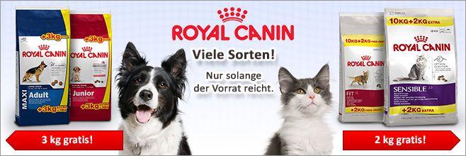 Bitiba.de - Tierbedarf und Tierfutter zu Discountpreisen %