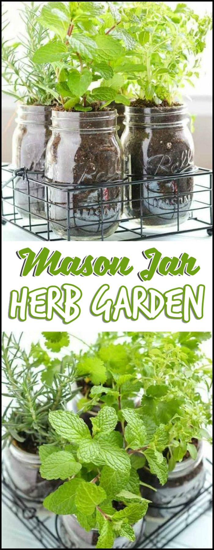 20 best herb gardens images on pinterest easy diy projects