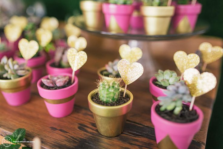 20 Mini Potted Succulent Wedding Favours Pink by FairLightBlessed