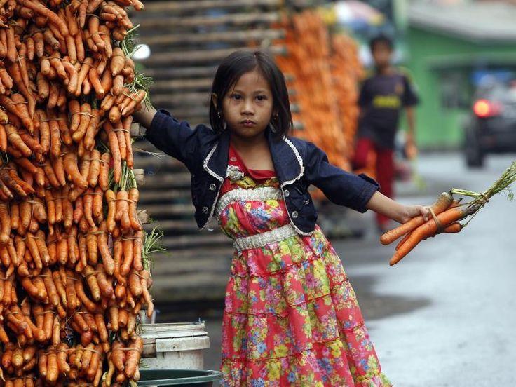 Rani, fünf Jahre alt, bei der Arbeit: Das indonesische Mädchen verkauft auf der Straße Karotten.