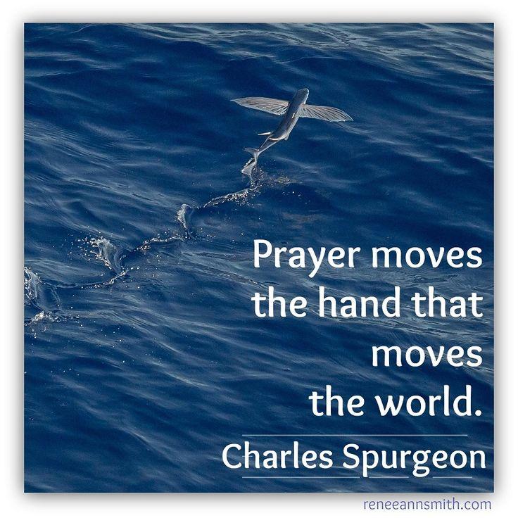 Pray.                                                       …