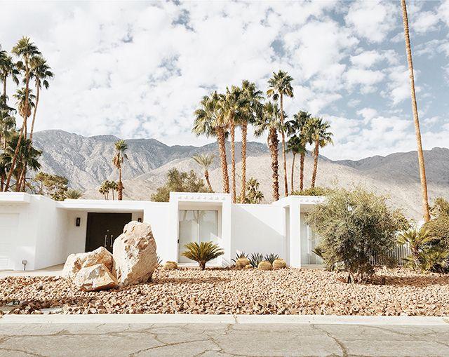 sarah sherman samuel | weekend scenes: palm springs drive-bys