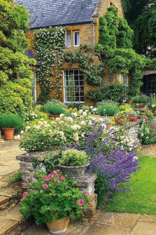 12833 best a walk through the garden images on pinterest - When you walk through the garden ...
