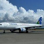 Solomon Airlines suspends all services