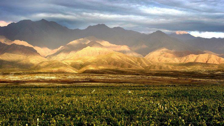 Alta Vista Rosé de malbec es un vino que ofrece todo su potencial durante la primavera, cuando sale al mercado la cosecha más reciente.