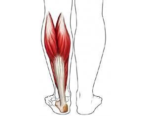 Causes of Severe Leg Cramps at Night