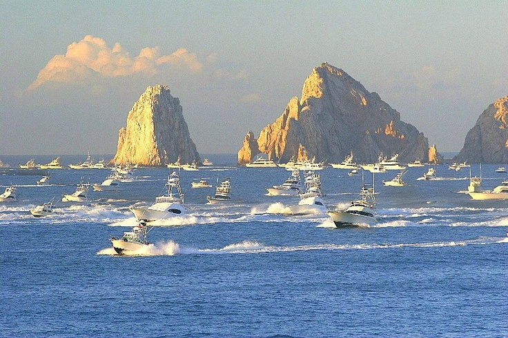 7 best fishing in cabo san lucas images on pinterest for Fishing in cabo