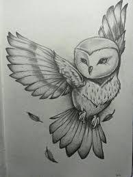 Resultado de imagen para dibujos para dibujar a lapiz dificiles de animales