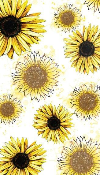 Pin By Emily Shoemaker On Backgrounds Sunflower Wallpaper Iphone Wallpaper Fall Sunflower Iphone Wallpaper Cartoon sunflower picture wallpaper