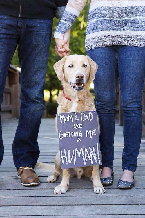 Make a sign like this for Ava! Not necessarily for the maternity shoot but just to have lol