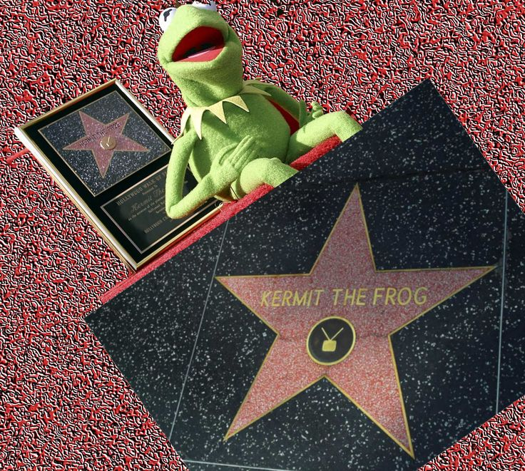 1000 Images About Mega Muppet Board On Pinterest: 1000+ Images About Cartoon Character On Walk Of Fame On