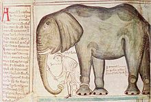 Seems, every monarch has got his own elephant in his ZOO~ Henry VIII's  elephant, given to him by Louis IX of France, by Matthew Paris.