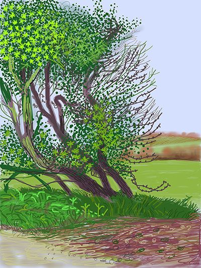 David Hockney __   The Arrival of Spring in Woldgate, East Yorkshire, in 2011. iPad drawing printed on paper.