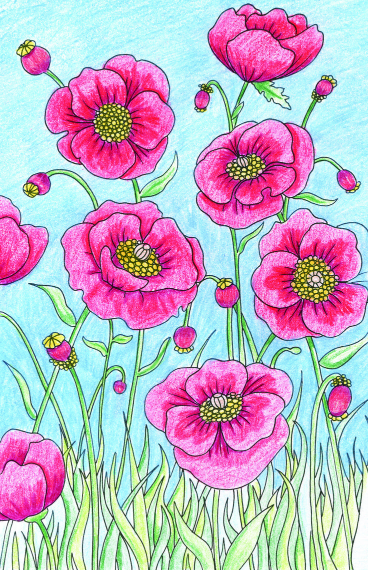 Little book of coloring for mindfulness - We Spent The Weekend Colouring In A Spread From Little Book Of Colouring In Bloom