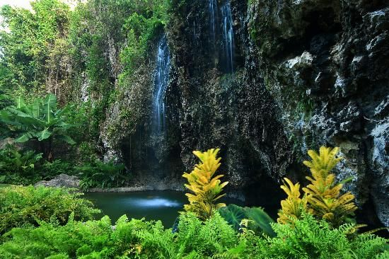 Apes Hill Golf Club: Apes HiIl Waterfall
