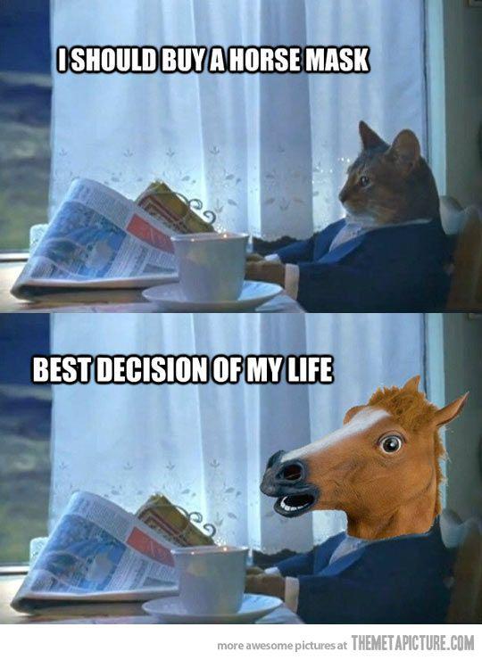 b3a3837582de5c6697077a26874d2780 horse meme horse quotes 16 best i should buy a boat images on pinterest ha ha, funny