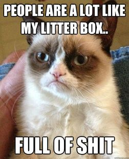 "So, I'm pretty sure that ""grumpy cat"" is really a sweetheart. But, even a sweetheart has to agree, this is true of a lot of folks. ha ha ha"