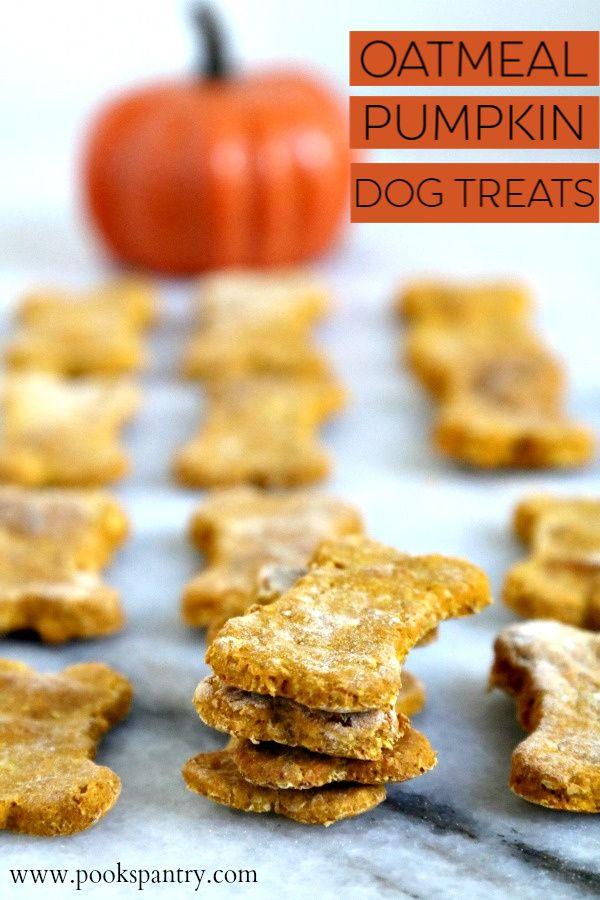 Oatmeal Pumpkin Dog Treat Recipe Dog Treat Recipes Pumpkin
