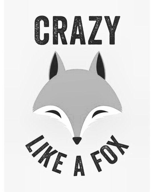Fox ♡